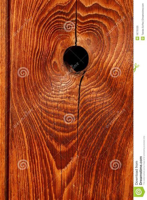 wood knot stock photo image