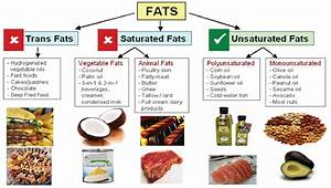 Saturated Fat & Cholesterol - The Calorie Ninja
