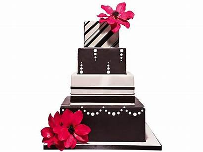 Cake Modern Brown Cakes Pink Clipart Flowers