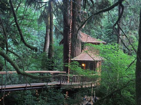 Treehouse Point, Fall City, Washington (as Seen On