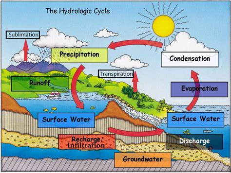 usb water cycle earth science