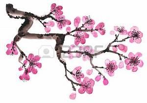 Dessin Fleur De Cerisier Japonais Noir Et Blanc : fleur de cerisier japonais dessin du japon et des fleurs ~ Melissatoandfro.com Idées de Décoration