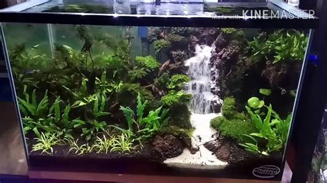 Waterfall Aquascape by Waterfall Aquascape Tank 35 35 60 Airterjunpasir
