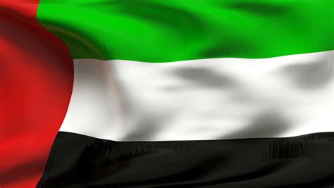 Dubai Flag Stock Footage Video
