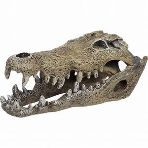 Blue Ribbon Nile Crocodile Skull Aquarium Ornament | Petco