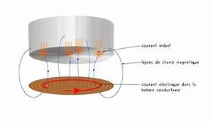Casserole Pour Plaque A Induction : comment fonctionnent les plaques induction couleur science ~ Melissatoandfro.com Idées de Décoration