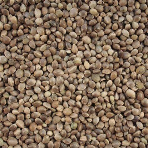 hemp seed for birds quality bird food british wild bird