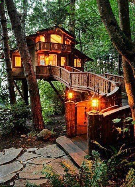 maison en bois dans les arbres une cabane dans les arbres luxe nature et chic archzine fr nature chalets et fils