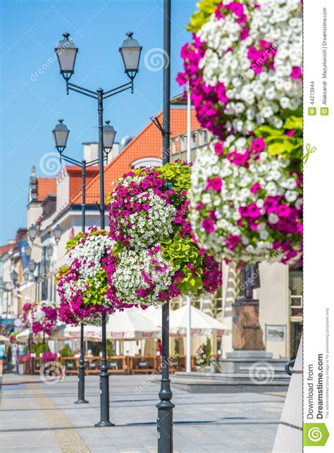 flower arrangement  street lamp stock photo image