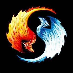 Fire and Ice Dragons images Fire and Ice wallpaper and ...