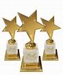 Best Actor Award - A unique Actors Awards Festival