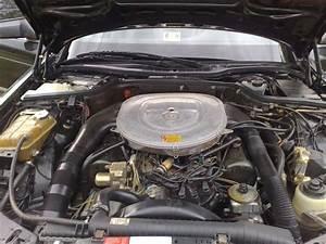 Help  Critique This Engine Bay