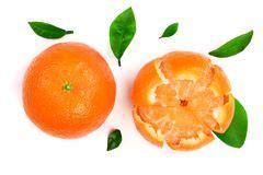 Tangerine Fruit Stock Image Orange White Ripe