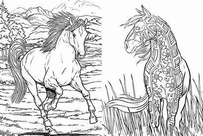 Coloring Horse Pages Adults Cowgirl Inbox Newsletter