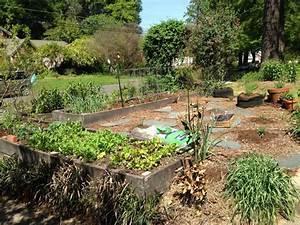 les 25 meilleures idees de la categorie paillage jardin With allee de jardin originale 8 terrasse et jardin en 105 photos fascinantes pour vous