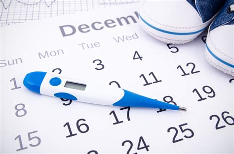 Ever Wondered How Many Months Do You Ovulate Weve Got