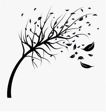 Blowing Wind Tree Drawing Leaves Clipart Silhouette