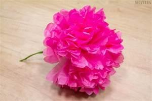 Fleur En Papier De Soie : 10 diy simples pour fabriquer des fleurs en papier magnifiques ~ Nature-et-papiers.com Idées de Décoration