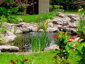 image preview With plan de bassin de jardin