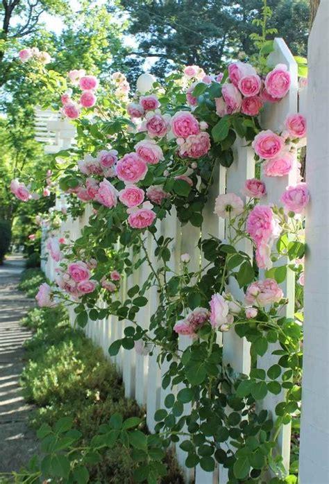 Tipps Für Gartengestaltung by Gartengestaltung Mit Tipps F 252 R Einen Sch 246 Nen