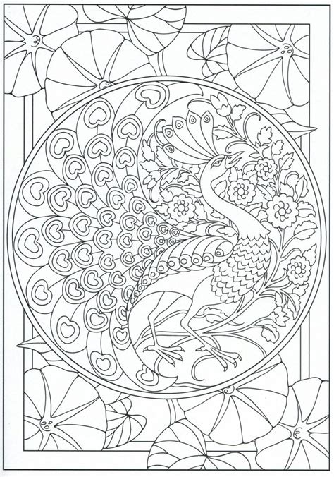 peacock coloring page  adults  color pages