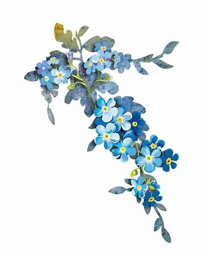 Border Flowers Watercolor Forget Azul Flor Aquarela