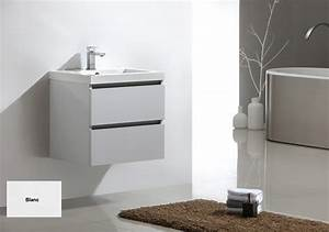 Beautiful meuble double vasque brico depot photos for Meuble vasque salle de bain pas cher brico depot
