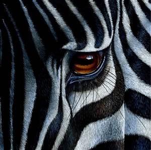 Saatchi Art: Zebra Painting by Jürek Zamoyski