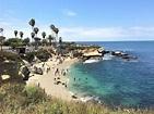 La Jolla Cove: 8 Things Even the Locals Don't Know   La Jolla
