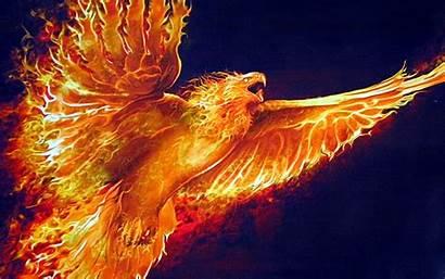 Phoenix Fire Wings Backgrounds Bird Wallpapers Fantasy