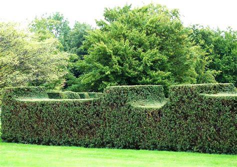 Britzer Garten Regeln by Fotos Britzer Garten 02 Der Rosengarten Ist Mit