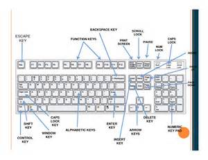 Pin Computer Keyboard Parts And Functions On Pinterest