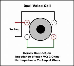 21 Images Dual Voice Coil Wiring