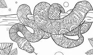 coloring page of a snake - 9 snake coloring pages jpg psd free premium templates