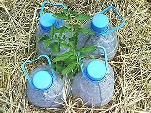 Système D Arrosage Goutte À Goutte : irrigation solaire au goutte goutte le petit saint marthien ~ Melissatoandfro.com Idées de Décoration