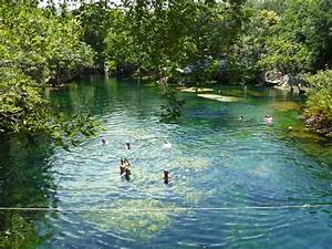 cenote el jardin eden clear water with lots of different With jardin eden