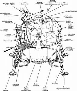 File L U0105downik Apollo - Diagram Svg