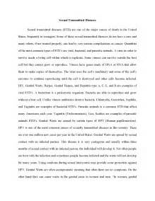 APA Essay Example Research Paper