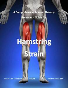 A Comprehensive Treatment Guide For Hamstring Strain