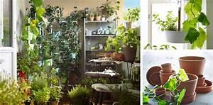 Blumentöpfe Für Draußen Günstig : blument pfe pflanzen und blumenst nder f r drau en ~ Sanjose-hotels-ca.com Haus und Dekorationen