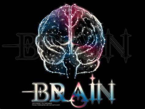 Digital Brain Wallpaper by Brain Hd Wallpaper Biological Science Picture Directory