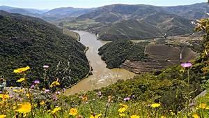 Fluss In Portugal : portugal am goldenen fluss amtc auto touring ~ Frokenaadalensverden.com Haus und Dekorationen