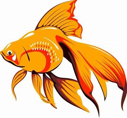 Clipart Fish Goldfish Clip