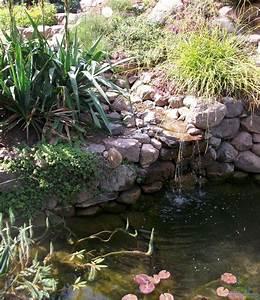 Teich Mit Wasserfall : teich mit bachlauf und wasserfall aus gartenteich von lily ~ Markanthonyermac.com Haus und Dekorationen