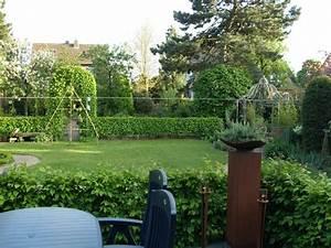 Sichtschutz Zum Nachbarn : sichtschutz zum nachbarn page 3 mein sch ner garten forum ~ Markanthonyermac.com Haus und Dekorationen