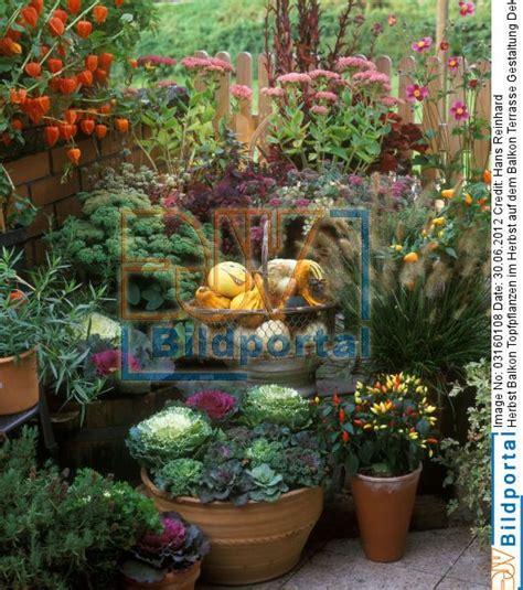 Herbstdeko Für Balkon by Balkon Dekoration Herbst