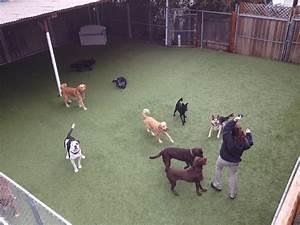 Park a pup kennels pet boarding pet sitting san rafael for Dog boarding near me