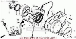 1983 Honda Vt750 Wiring Diagram 1983 Honda Cx650 Wiring