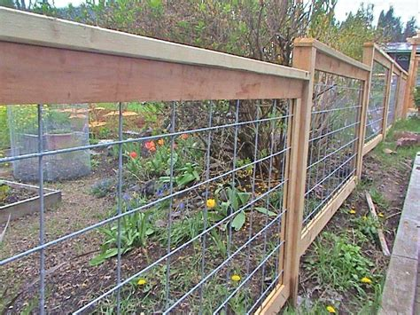 Galvanized Hog Panel And Cedar Fence.