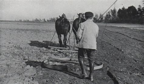 damals wars kartoffelgenussnet